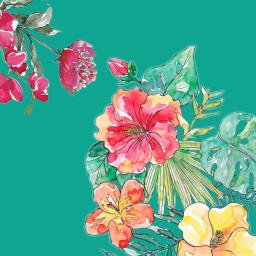 freetoedit watercolorflower teal flowers flower