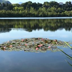italy sartirana lake merate