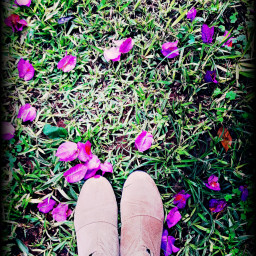 freetoedit shoes flowers colorful green