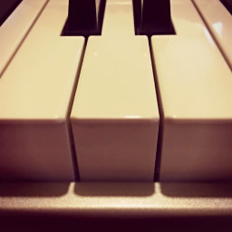piano music musiclover dpcmusicalinstruments
