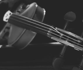 dpcmusicalinstruments