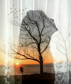 doubleexposure photography edited fantasy