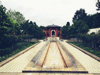 indischergarten india berlin photography colorful