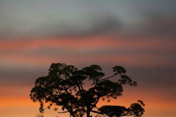 photography nature sunset