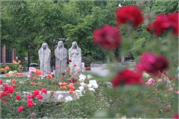 flowers roses garden statues chicostateuniversity