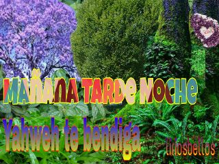 mañana yahweh byliriosbellos fromcostarica purelife freetoedit