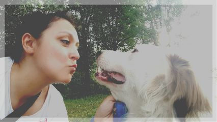 freetoedit photography mypet doglover kiss