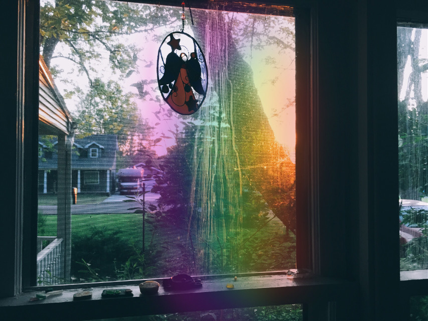 #FreeToEdit #rainbowlightcontest #goldenlight #window #light #trees #madewithpicsart #picsart #picsarttools