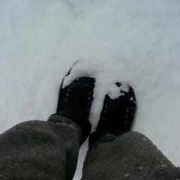 freetoedit myphoto snow dovelake tasmania