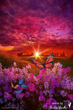 freetoedit remix remixed morning sunrise