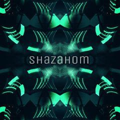 shazahom1 mirrorart mirrormania ilusion neon
