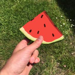 freetoedit melon summer