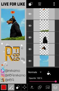 rf89 madewithpicsart editstepbystep tutorial visualtutorial