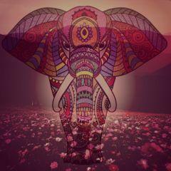 freetoedit elefant superposicion color