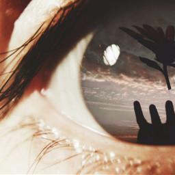 eye close-up vision hand flower