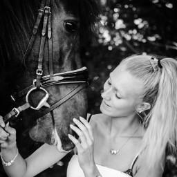 love horse