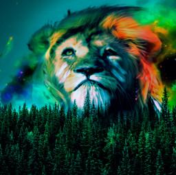 freetoedit remix lionking colorfull greenforestremix