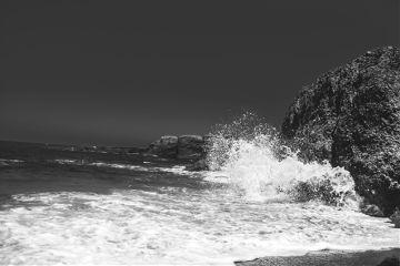 freetoedit beach blackandwhite photography