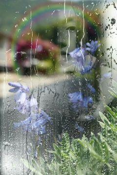 freetoedit window reflections