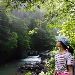 explore beautiful nature green wanderlust