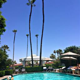 palmsprings freetoedit