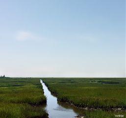 freetoedit marshland myoriginalphotothank