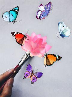 freetoedit butterflies flower stickers art