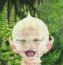 ferns fairy green vermont baby