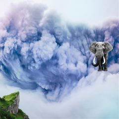 freetoedit cloud elephant morning storm