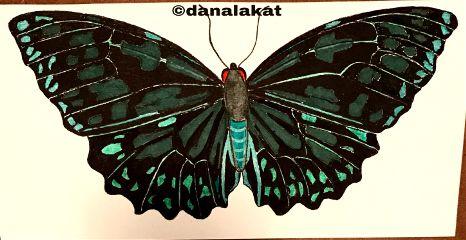 artinprogress art drawing ink inkart