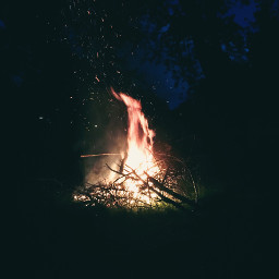 freetoedit campfire summer fire photography nature night trees