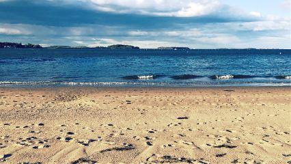 beach nature freetoedit