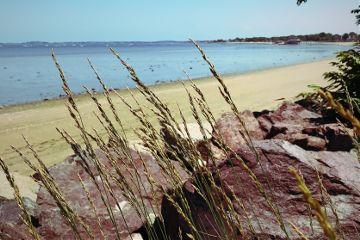 nature beach freetoedit
