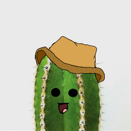 cowboy west cactus wildwest hat freetoedit