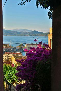 freetoedit elba travel