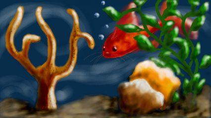 wdpfish catfish colorful nature water