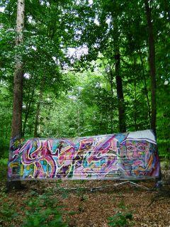 graffti art forest