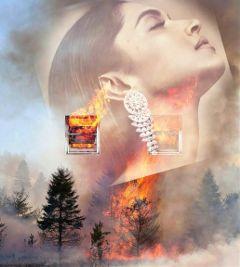 freeto edit forest fire smoke freetoedit