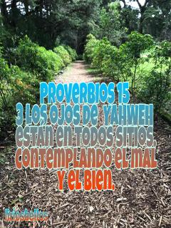 proverbios byliriosbellos purelife faith spiritualart