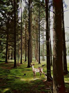 freetoedit sticker forest oilpaintingeffect