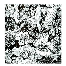 freetoedit inkdrawing squared blackandwhite flowers