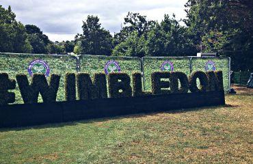 wimbledon wimbledon2017 tennis tennistournament championship freetoedit