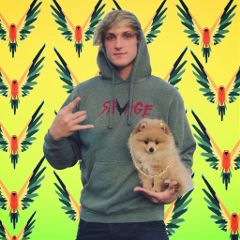 1000 Awesome Logang4life Images On Picsart