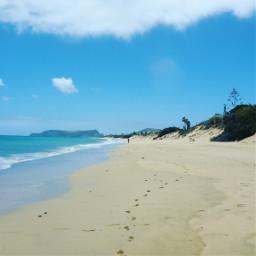 freetoedit beach beachselfie