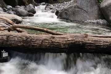 waterfall manali natureatitsbest shobitabhasinphotography