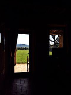 green nature tuscany freetoedit