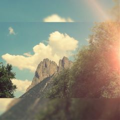 nature mountain tree
