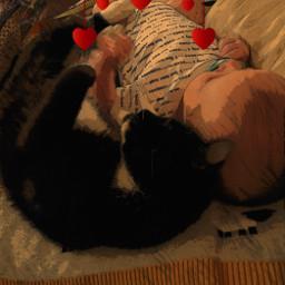 freetoedit catlove poorlybabies