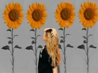 freetoedit sunflowee flowers orangegirlremix
