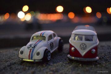 miniature ww night pjoto photooftheday